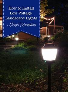 how to install landscape lights and repel mosquitoes With low voltage outdoor lighting installers