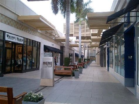 waterside shops  picture  waterside shops naples