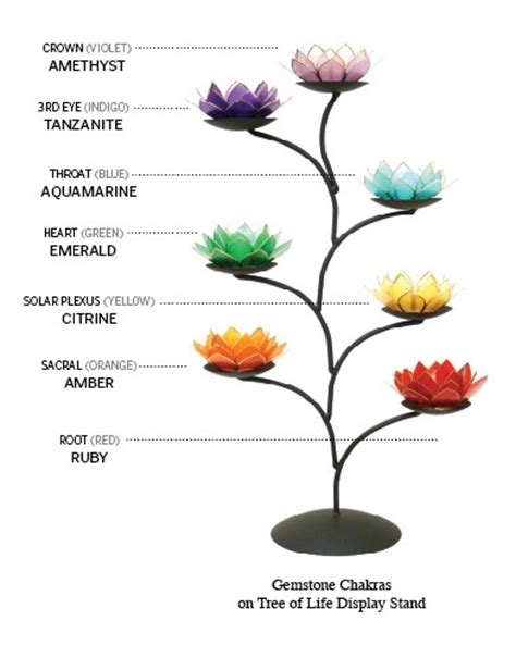 lotus flower color meanings lotus flower meaning quotes quotesgram