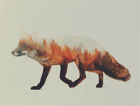 double exposure animal portraits  andreas lie colossal
