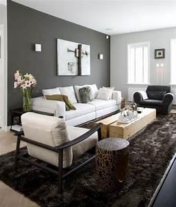 Peinture Blanc Gris : deco gris et beige salon ~ Nature-et-papiers.com Idées de Décoration