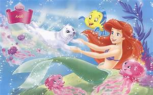 Princess Ariel - Disney Princess Wallpaper (9546527) - Fanpop