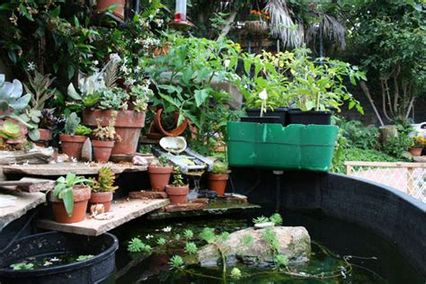 The Aquaponics Journal Details