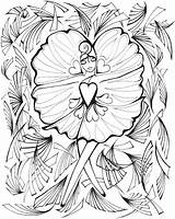 Fanciful Dover Doverpublications Adultes Butterflys Attrape Complexe Samples Adatto Miryam Volwassenen sketch template