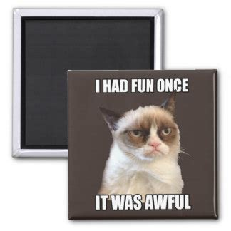 Grumpy Cat Meme I Had Fun Once - meme gifts t shirts art posters other gift ideas zazzle