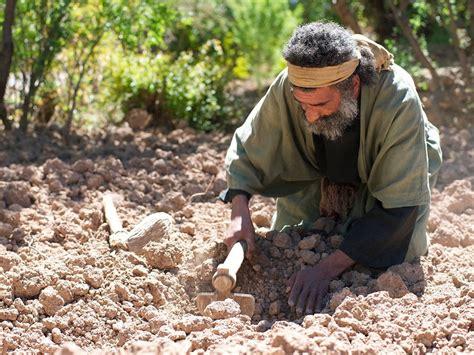 treasure hidden pearl 44 matthew parables 46 kingdom heaven story jesus freebibleimages he his stories heart surprise habitare secum something
