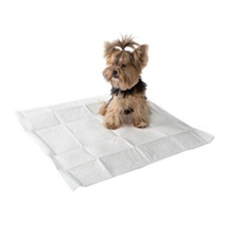 couches jetables pour chiens tiendanimal