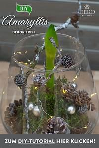 Amaryllis In Wachs : pin von sibylle harant auf bodenglas diy ~ A.2002-acura-tl-radio.info Haus und Dekorationen