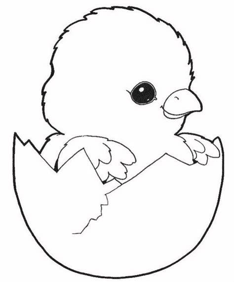 gambar mewarnai anak ayam
