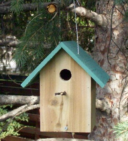 building   birdhouse  steps  pictures