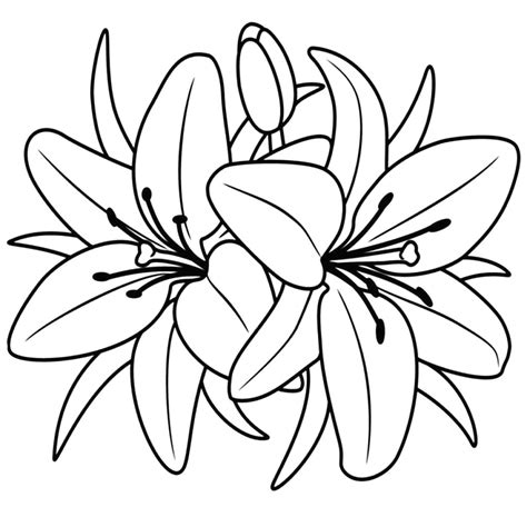 immagini  fiori da colorare kelseyjean  avec