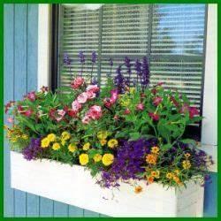 Künstliche Blumen Für Balkonkästen : bunter sommerlicher blumenkasten in regenbogenfarben ~ A.2002-acura-tl-radio.info Haus und Dekorationen