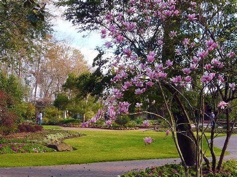 mercer arboretum and botanic gardens tx arboretum botanic gardens always in bloom