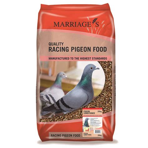 pigeon cuisine marriages pigeon conditioner food 20kg pets at home