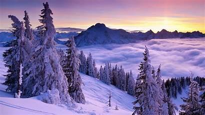 Winter Purple Sunset Wallpapers 1600 1080