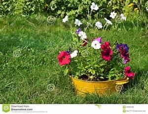 Blumen Für Garten : ideen f r garten blumen im waschbecken stockfoto bild 45295338 ~ Frokenaadalensverden.com Haus und Dekorationen