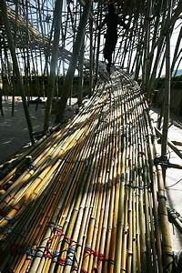 U2018big Bamb U00fa U2019 By The Starn Brothers At The Met
