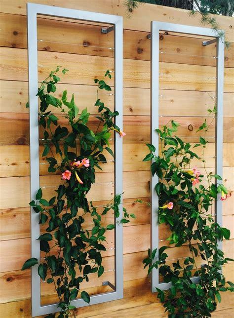Best 25+ Wall Trellis Ideas On Pinterest  Trellis Ideas