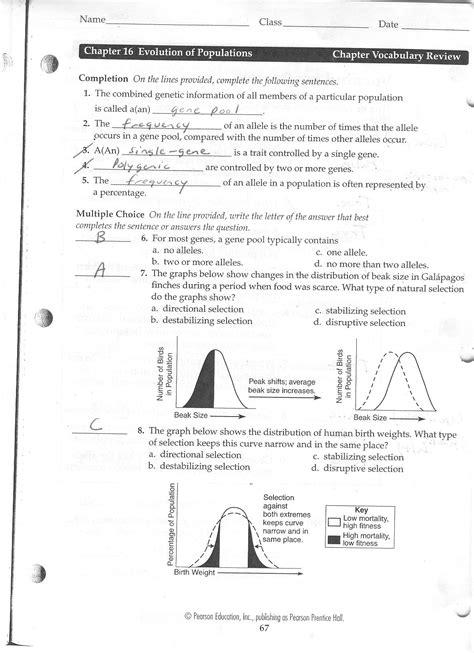 selection evidence of evolution worksheet