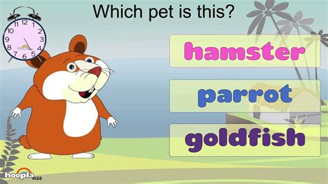 learn about pets preschool activity children songs 344 | maxresdefault