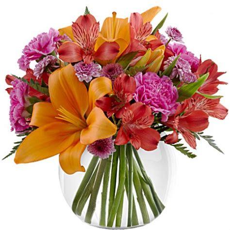 light of my bouquet light of my bouquet