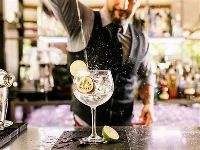 Bartender Cocktail Making Drink Away Perfect Independent
