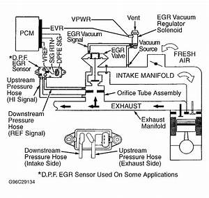 33 Ford F150 Vacuum Hose Diagram