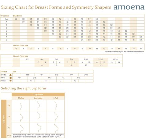 abc breast forms size chart amoena sizing charts