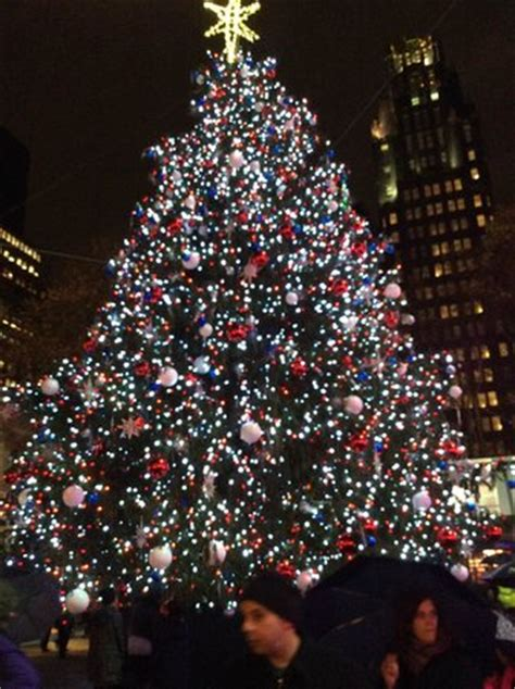 times square christmas tree tree at bryant park picture of intercontinental new york times square new york city