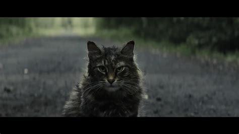 news trailer des tages friedhof der kuscheltiere