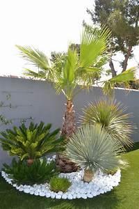 Palmier De Jardin : am nagement d 39 une piscine et d 39 un jardin contemporain ~ Nature-et-papiers.com Idées de Décoration