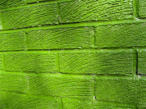 Die Farbe Grün by Gr 252 N Macht Kreativ