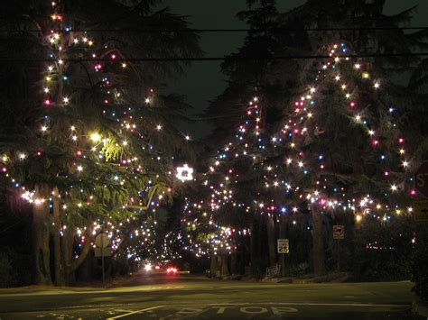 what are the dates for christmas tree lane in fresno file tree jpg wikimedia commons