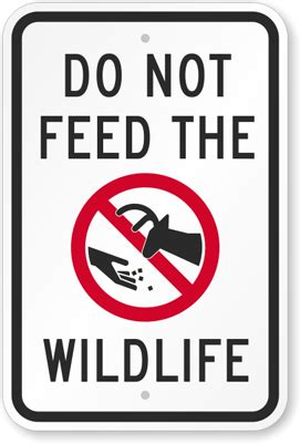 Do Not Feed Wildlife With Graphic Sign  Warning Sign, Sku. Eyeglasses Insurance Plans Divorce Lawyer Ca. Maranacook Middle School Digital Video School. Need Help With Back Taxes How Do Make Website. Leads For Life Insurance My Hands Sweat A Lot. Free Church Financial Software. Westmoreland Insurance Johnson City Tn. Sexual Harassment Questions Va Business Loan. Where Do Game Designers Work