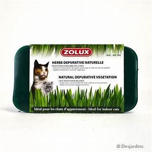 Herbe à Chat : herbe chat d purative zolux ~ Melissatoandfro.com Idées de Décoration