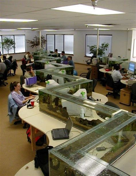 aquarium bureau aquarium de bureau photo