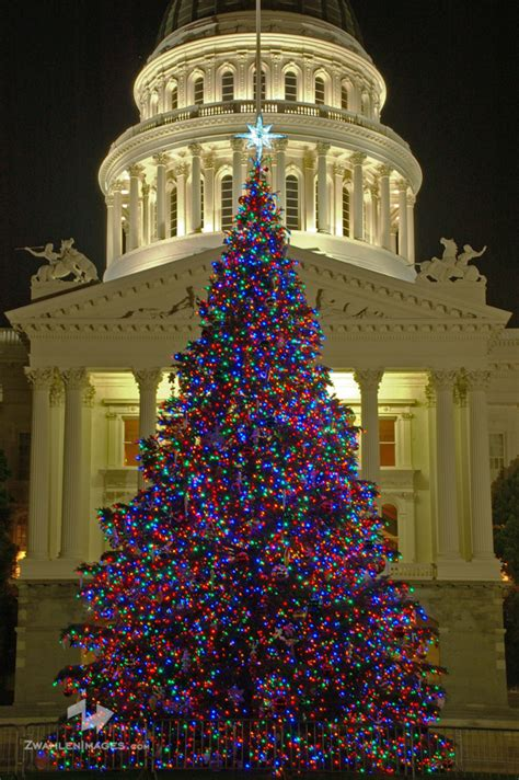 christmas tree lots in sacramento carmichael area livinginurbansac downtown sacramento lights