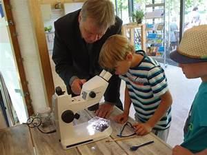 Landesgartenschau Apolda Veranstaltungen : mikroskope f r landesgartenschau in apolda mikroskopie news blog ~ A.2002-acura-tl-radio.info Haus und Dekorationen