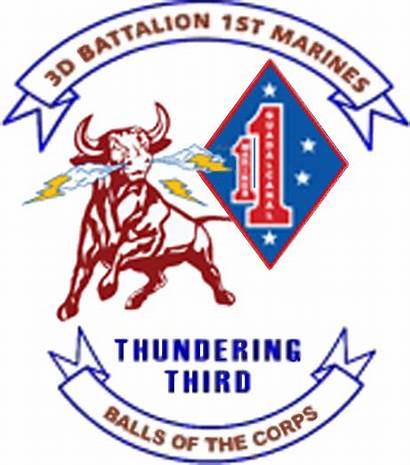 1st 3rd Marines Corps Battalion Marine Unit