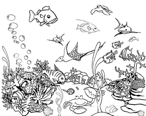 Tropical Fish Coloring Pages by Tropical Fish Tank Coloring Page Netart