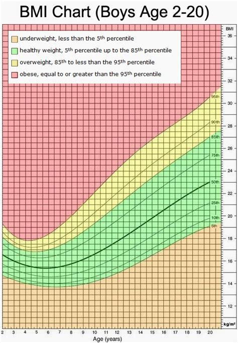 green serviette body mass index calculate