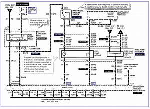 2003 Ford Expedition Fuel Pump Wiring Diagram