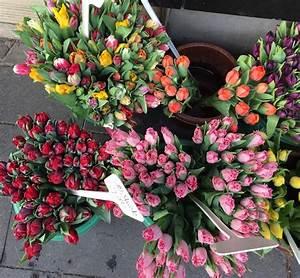 Flower Power Blumen : blumen flower power fr hlingsboten flattern durch die l fte sophiagaleria ~ Yasmunasinghe.com Haus und Dekorationen