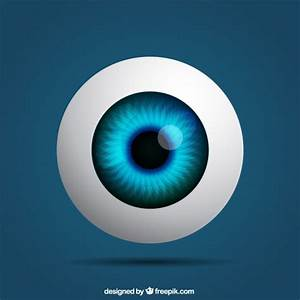 Realistic eye Vector   Free Download