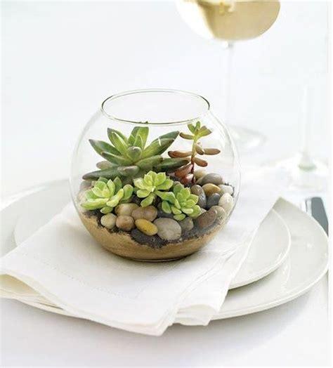 Mini Terrarium Glas best 25 mini terrarium ideas on diy terrarium