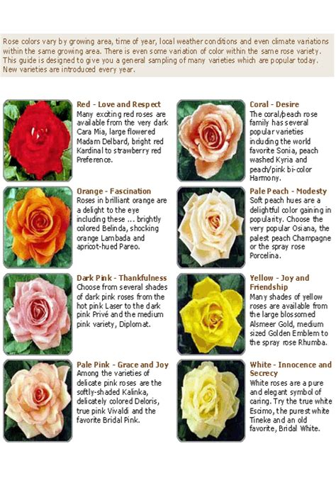 meaning of color of roses symbol of colors meanings from the of