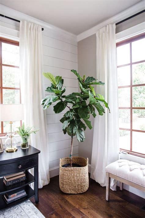 living room wood white shiplap white curtains