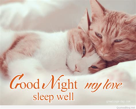 good night  love images dp status messages  wallpapers