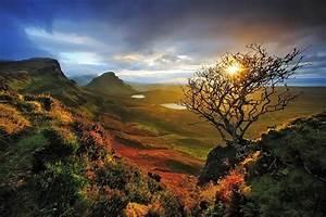 nature, , landscape, , skye, , scotland, , sunrise, , dead, trees