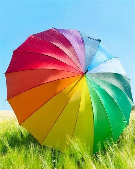 best 25 rainbow colors ideas on